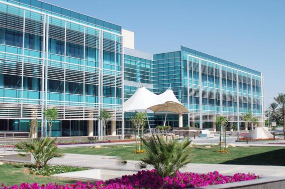 Saudi Ensas Co  Ltd